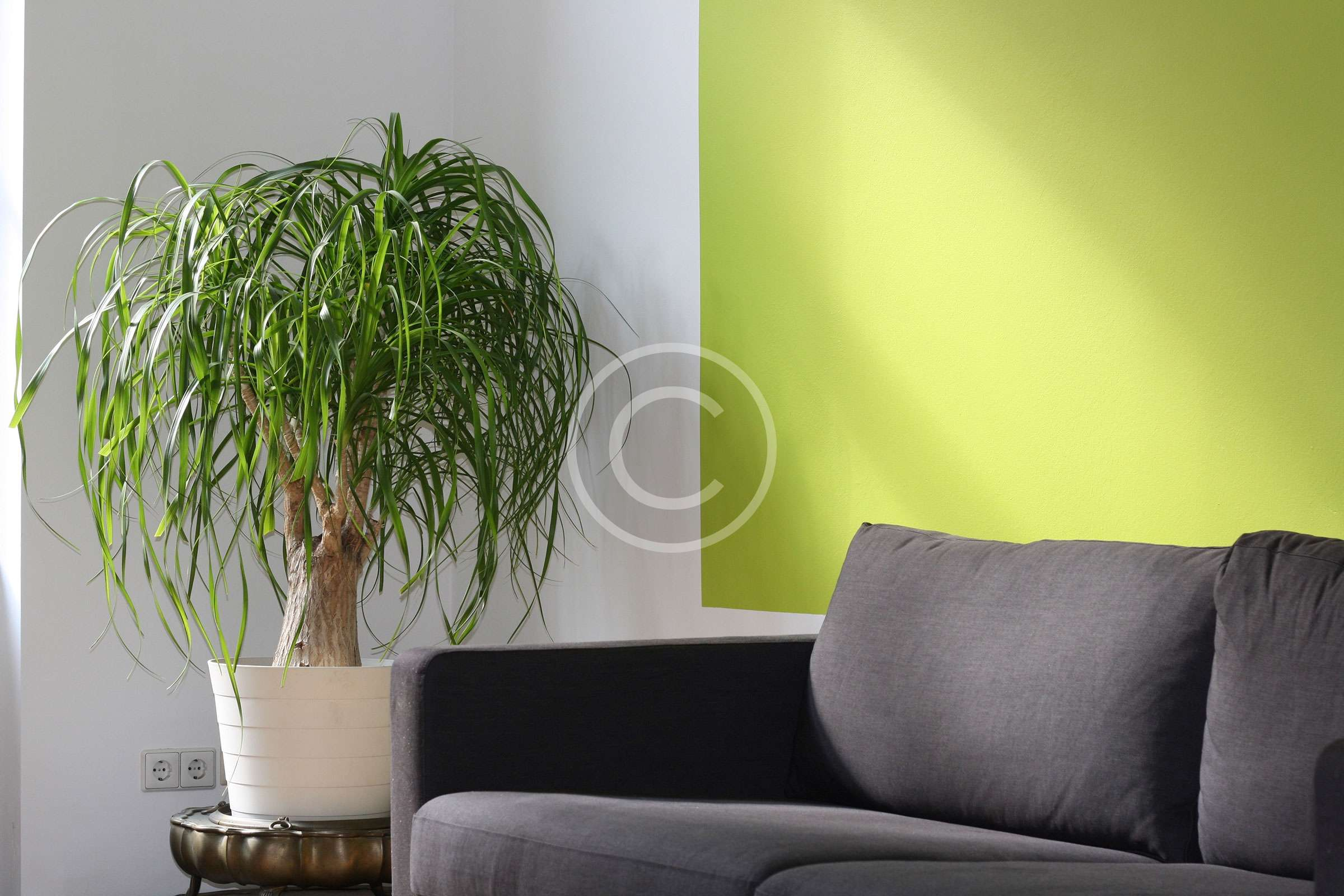 Ways To Decorate With Paint